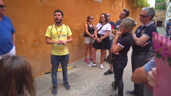 Free Tour Flamenco Show en Sevilla
